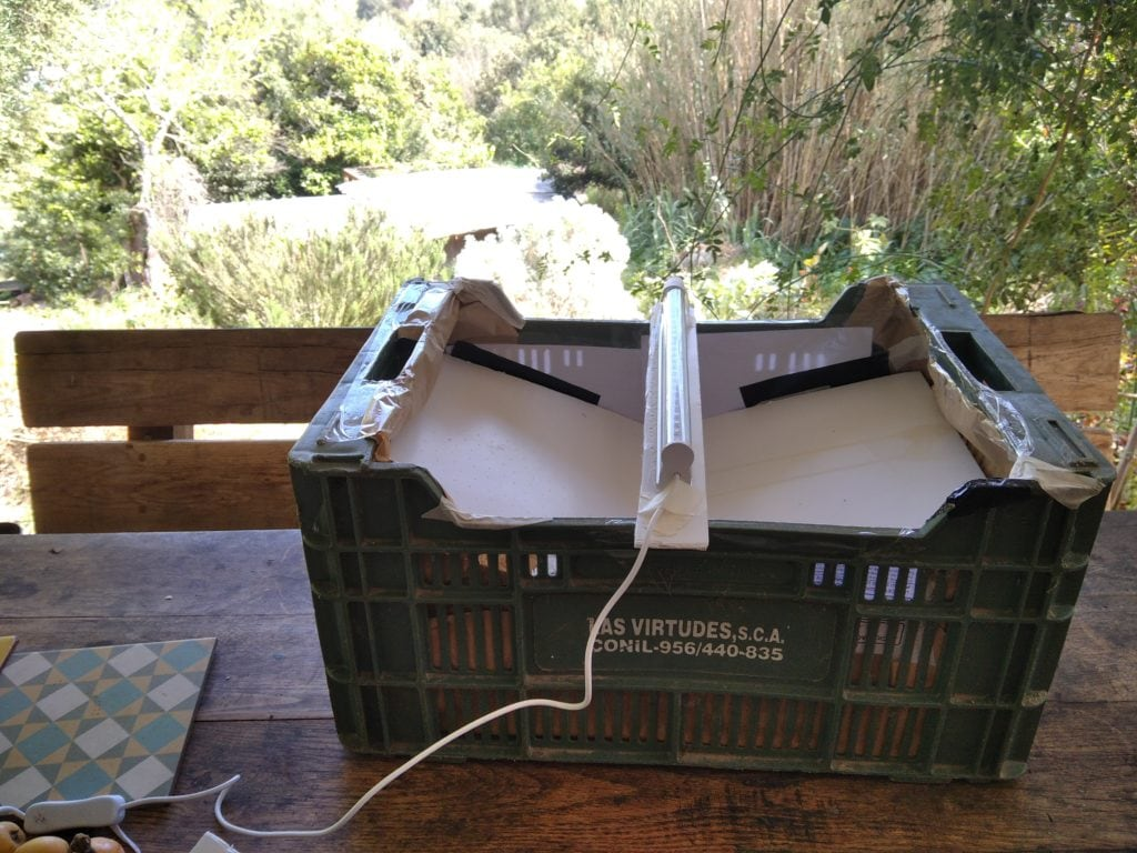 Improvised moth trap made using a paper lined plastic crate and UV light.