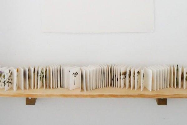 sophie twiss art ecology