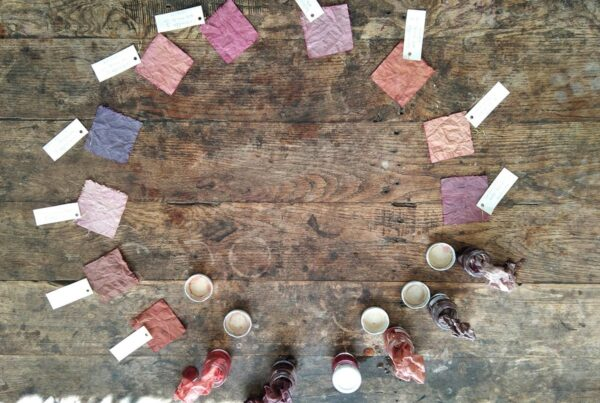 Circle of samples dyed with cochineal
