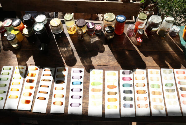 Small bottles of ink made from plants and samples of the colours on strips of paper